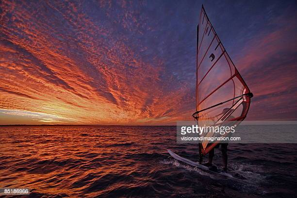 surfer at sunset - windsurfing stock pictures, royalty-free photos & images