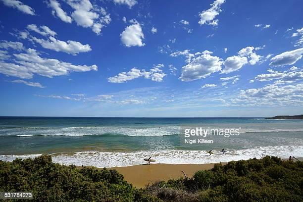 Surfer at Torquay Beach, Victoria, Australia