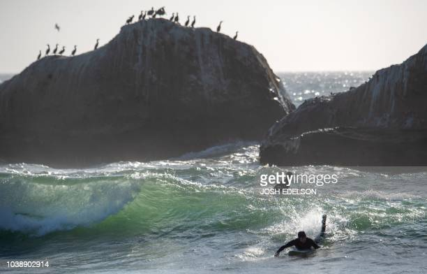 A surfer catches a wave at Martin's Beach in Half Moon Bay California on September 19 2018 Billionaire Vinod Khosla purchased the land and has been...