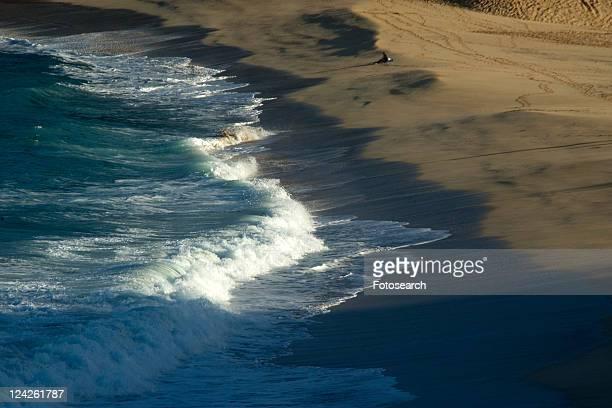 surfer contemplates waves breaking in waimea bay beach park, north shore, oahu, hawaii, usa - waimea bay - fotografias e filmes do acervo