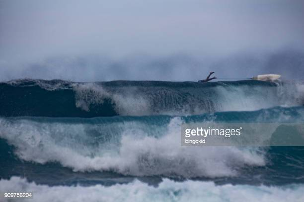 surfer jumping over the big waves - waimea bay hawaii stock photos and pictures