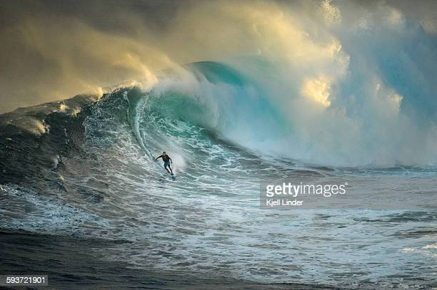 surfer on a big wave at jaws - breaking wave stock pictures, royalty-free photos & images