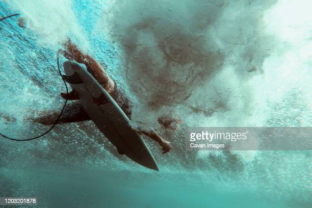 surfer on surfboard, underwater shot - paddling stock pictures, royalty-free photos & images