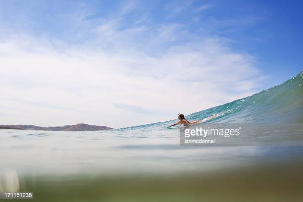 surfer - paddling stock pictures, royalty-free photos & images