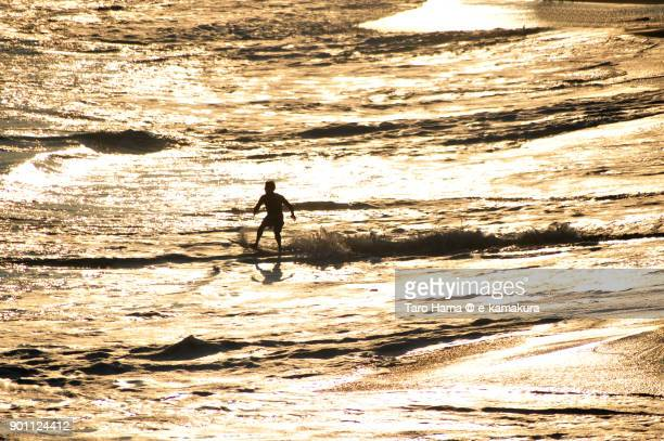 A surfer playing on the sunset beach in Kamakura city in Kanagawa prefecture in Japan