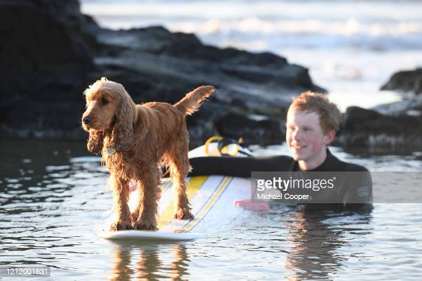 Surfer plays with his dog on a deserted Castlerock Beach, Co Londonderry on May 6, 2020 in Castlerock, Northern Ireland. The UK is continuing with...