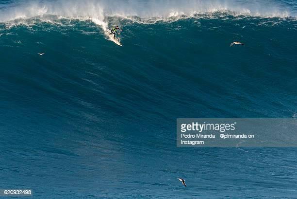 Surfer rides huge wave in Nazaré