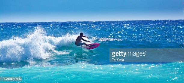 surfer surfing in poipu beach, kauai,hawaii - category:census-designated_places_in_honolulu_county,_hawaii stock pictures, royalty-free photos & images