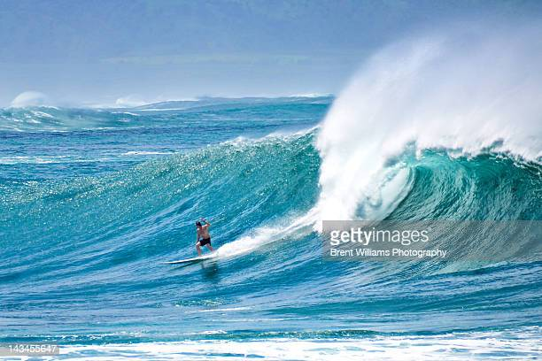 surfer surfing in waves - waimea bay hawaii stock photos and pictures