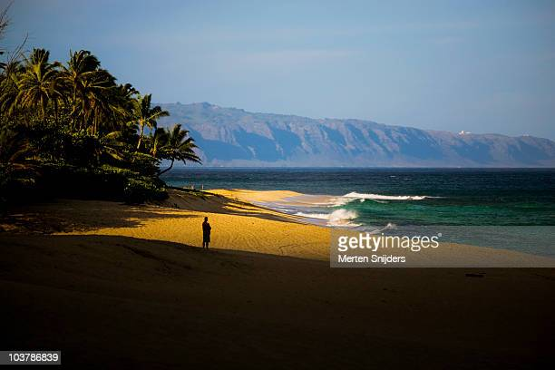 surfer waiting for swell to arrive, his silhouette contrasting with light on sand. - waimea bay stock pictures, royalty-free photos & images