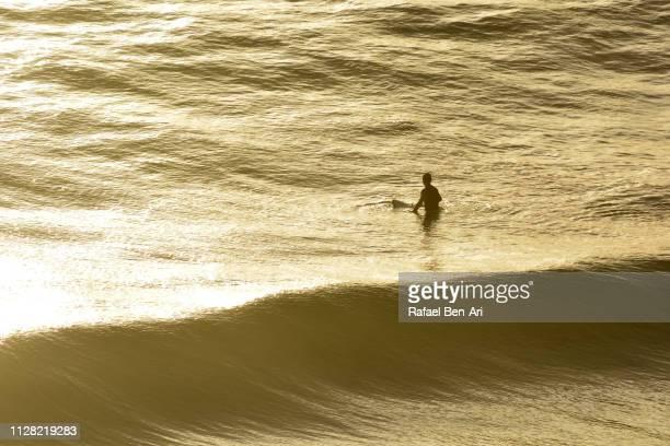 surfer waits for the perfect wave - rafael ben ari bildbanksfoton och bilder