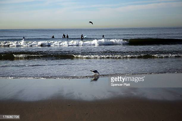 Surfers and birds visit the waterfront in the morning light along Rockaway Beach on July 31, 2013 in the Queens borough of New York City. Despite the...
