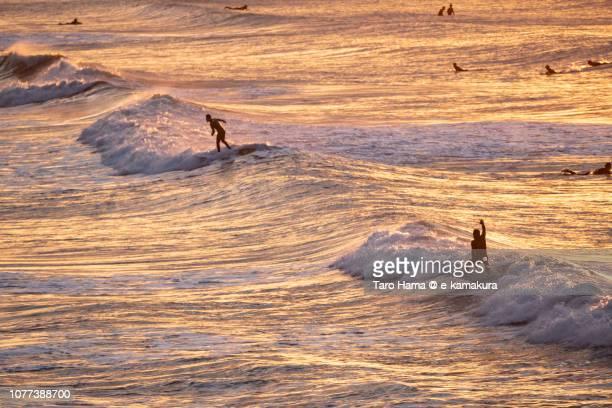 Surfers enjoying the surf on the morning beach in Kamakura in Kanagawa prefecture in Japan