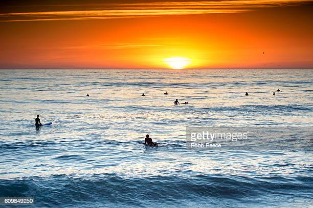surfers in the ocean waiting for a wave at sunset - robb reece stock-fotos und bilder