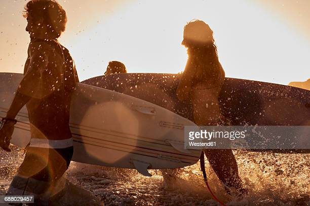 Surfers in the sea at sunset