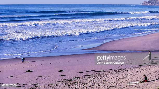 surfers on the beach in gisborne - gisborne stock photos and pictures