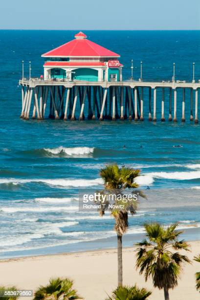 Surfers, Pier, and Palm Trees