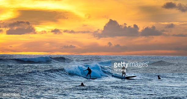 surfers surfung on the beach of kauai hawaii at sunset - category:census-designated_places_in_honolulu_county,_hawaii stock pictures, royalty-free photos & images