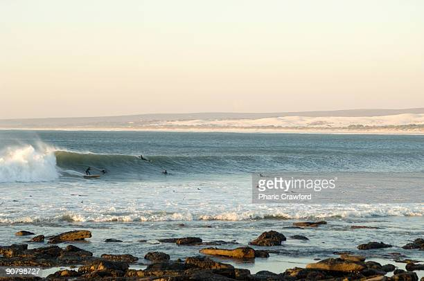 surfers swimming in water, elands bay, western cape, south africa - western cape province stock pictures, royalty-free photos & images