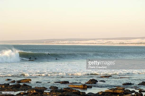 surfers swimming in water, elands bay, western cape, south africa - província do cabo oeste - fotografias e filmes do acervo