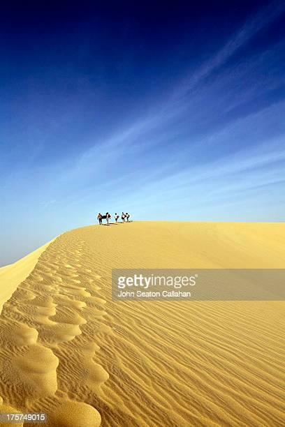 Surfers walking on dune in the Sahara Desert.