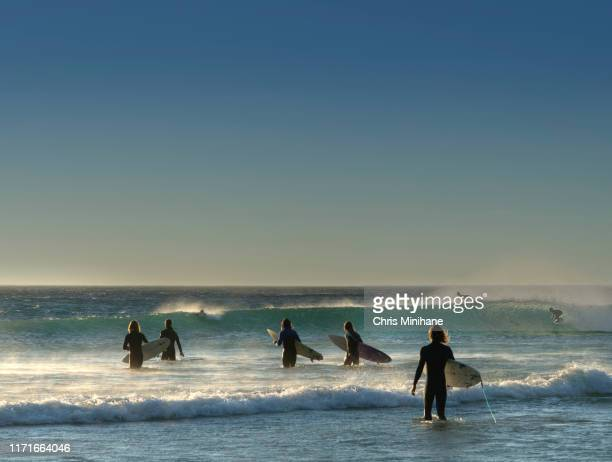 surfers walking towards waves - stock image - medium group of people stock pictures, royalty-free photos & images