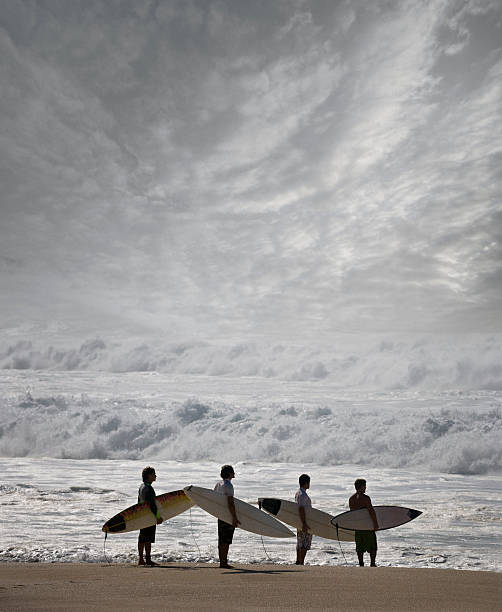Surfers with surfboard on beach, looking at view