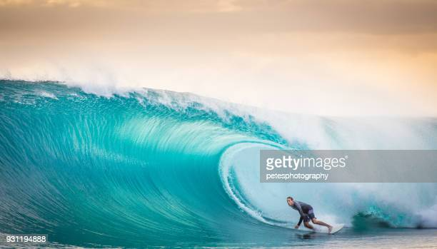 surfen eine perfekte welle in indonesien - welle stock-fotos und bilder