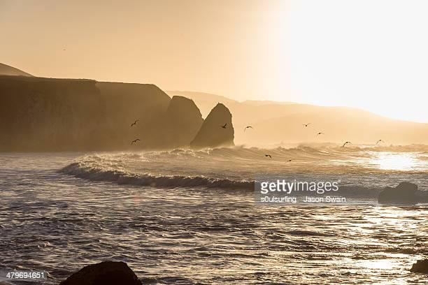surfing at sunrise on the isle of wight - s0ulsurfing stock-fotos und bilder