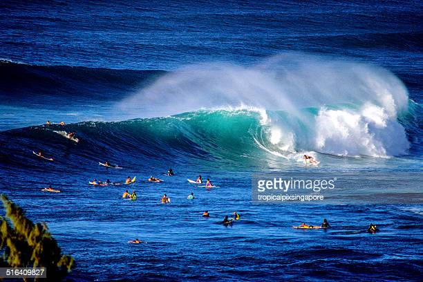 surfing at sunset beach - waimea bay hawaii stock photos and pictures