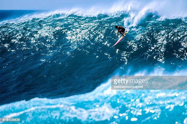 surfe em waimea bay - haleiwa - fotografias e filmes do acervo