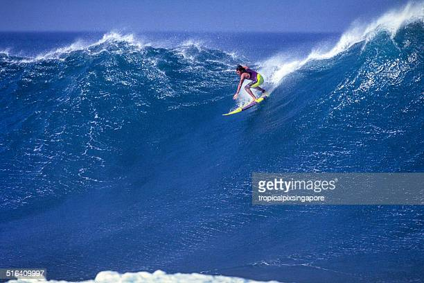 surfe em waimea bay - waimea bay - fotografias e filmes do acervo
