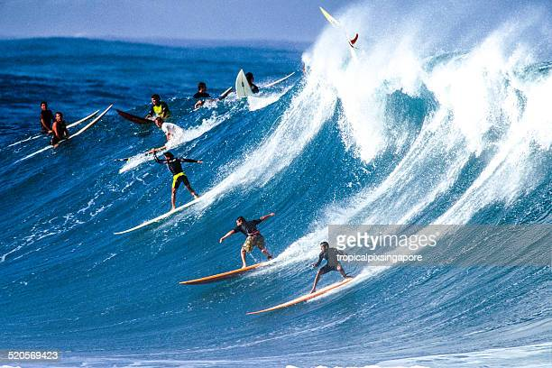 surfing at waimea bay - waimea bay hawaii stock photos and pictures