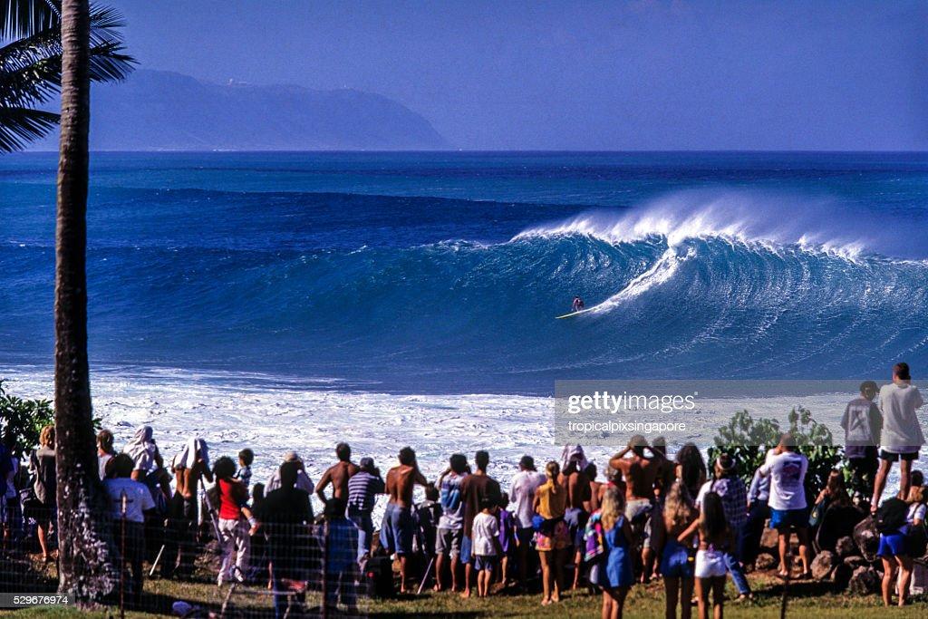 Surfing at Waimea Bay : Stock Photo