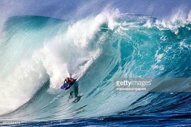 surfing at waimea bay - north shore stock photos and pictures