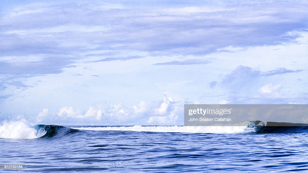 Surfing in the Andaman Islands : Stock Photo