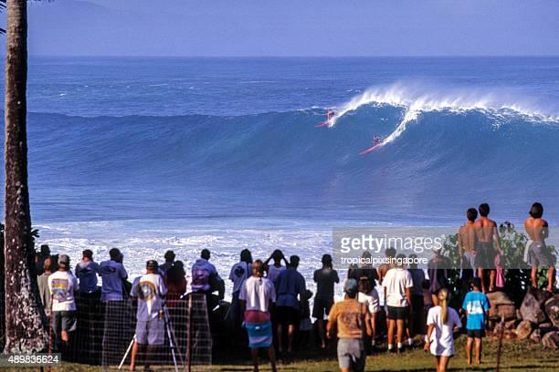 surfe na costa norte de waimea bay - haleiwa - fotografias e filmes do acervo