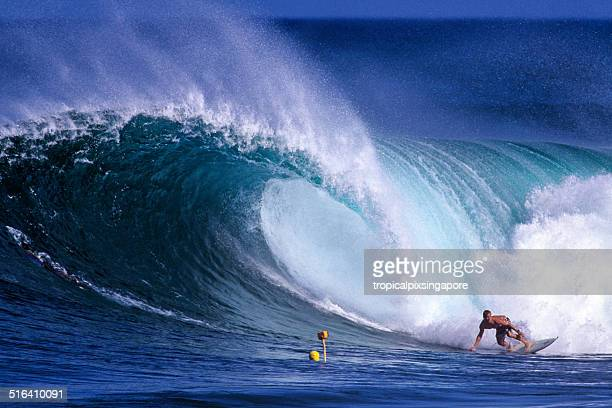 surfing on the north shore - haleiwa stock photos and pictures