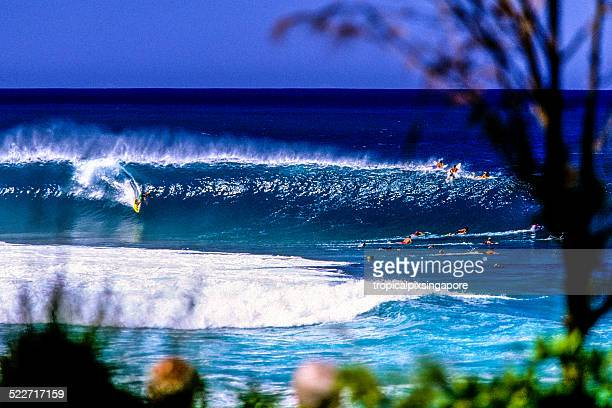 surfing on the north shore - banzai pipeline stock photos and pictures