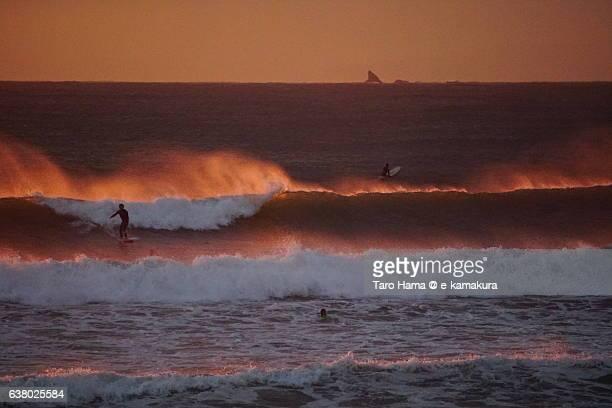 Surfing on the sunset beach