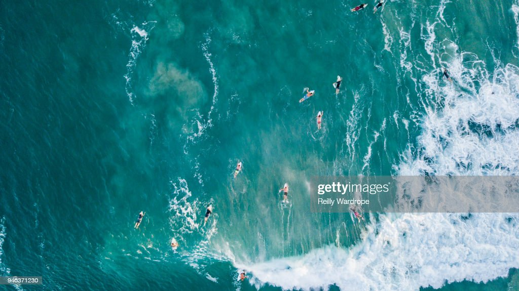 Surfing : Stock Photo