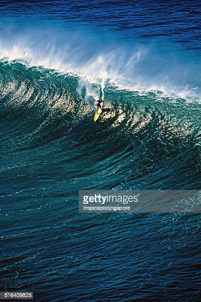 surfing pipeline - waimea bay hawaii stock photos and pictures