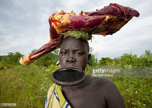 Surma woman with a huge lip plate in Kibbish village Omo valley Ethiopia on July 04 2010 Piercing and lip plates are a strong part of the Suri...