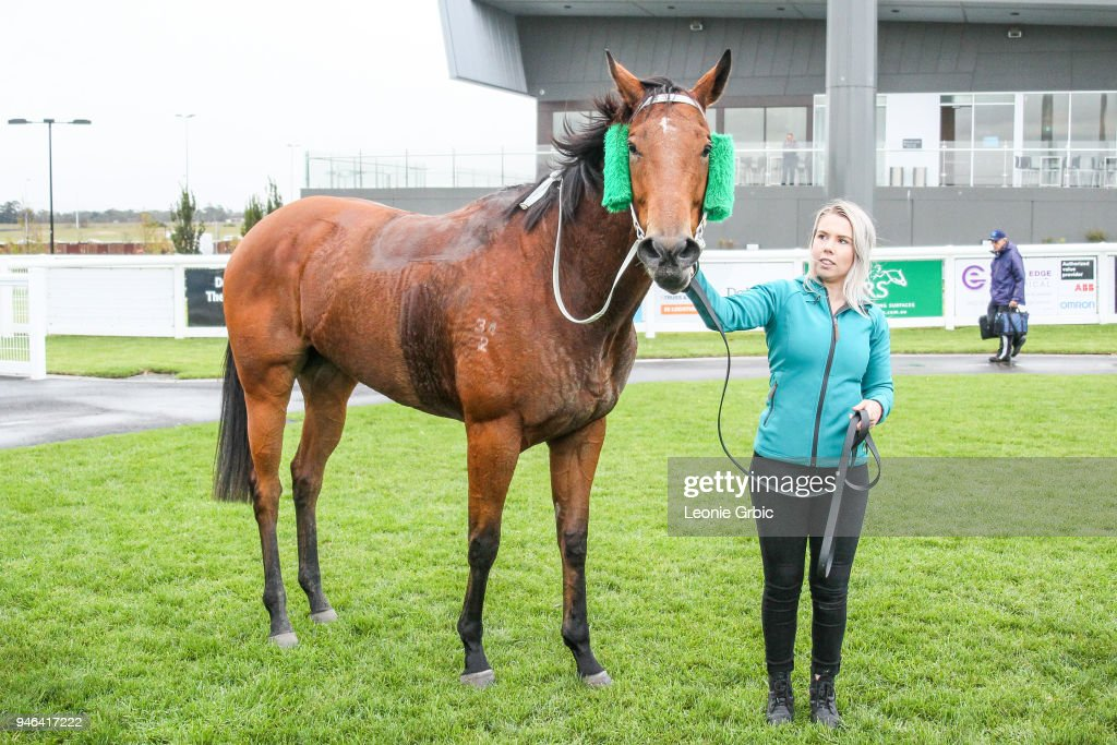 Surprise Hero after winning the Racing.com BM58 Handicap at Racing.com Park Synthetic Racecourse on April 15, 2018 in Pakenham, Australia.