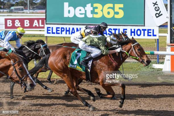 Surprise Hero ridden by Regan Bayliss wins the Sargeants Conveyancing Geelong Maiden Plate at Geelong Synthetic Racecourse on July 28 2017 in Geelong...