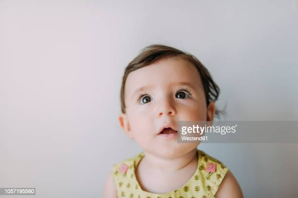 surprised baby girl looking up on white background - baby girls stock pictures, royalty-free photos & images
