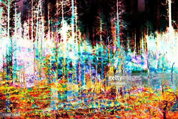 Surreal, abstract forest - art
