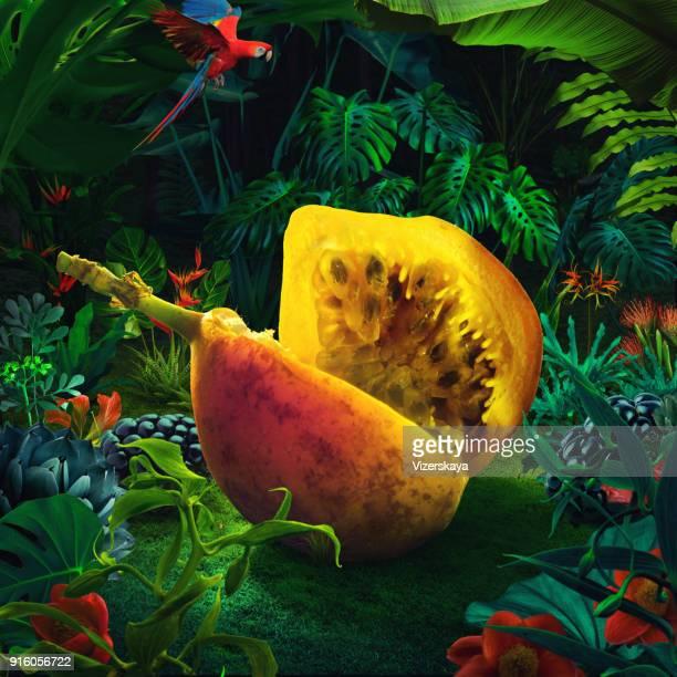 maracuyá gigante surrealista - comida flores fotografías e imágenes de stock