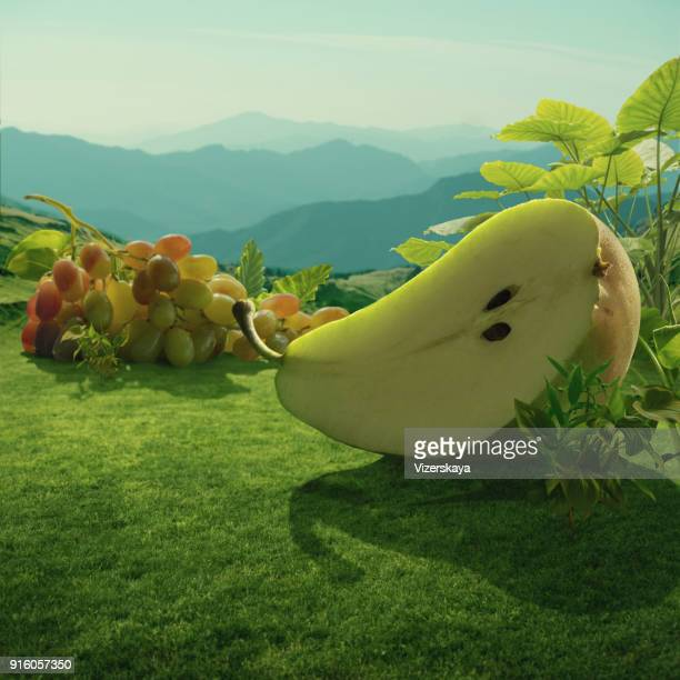 surreal giant pear and grapes at mountain field - giantess stock photos and pictures