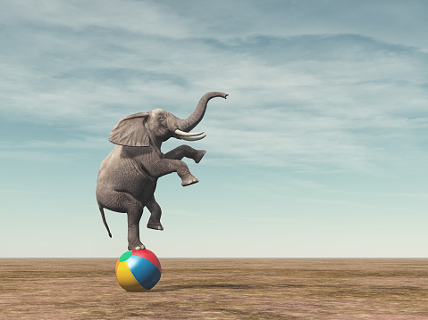 Surreal image of an elephant balancing on a beach ball 858259828